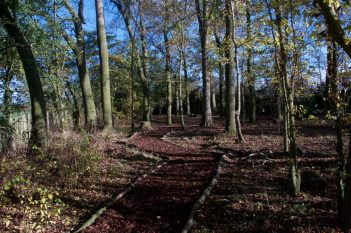 Fleckney Spinney Volunteering Path