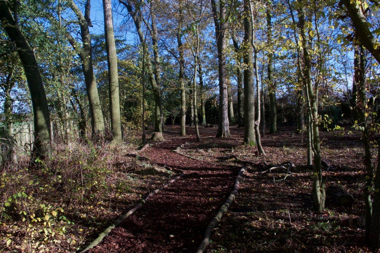Fleckney Spinney Volunteering Path