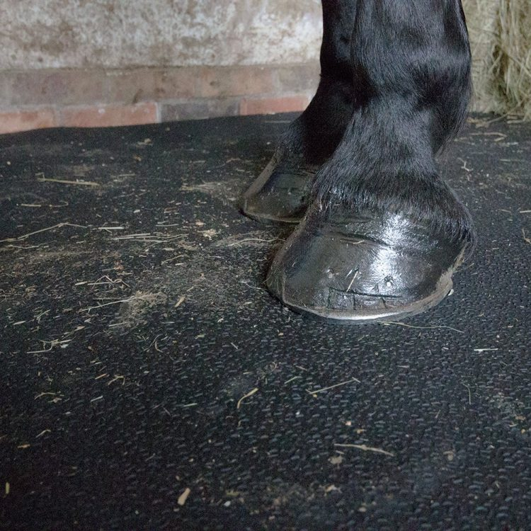 Stablemat